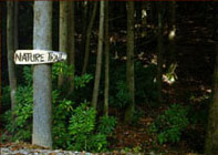 p_nature-trail