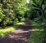 p_virginia_creeper_trail